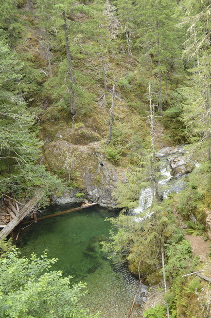 Turquoise pool at the start of the Opal Creek hiking trail