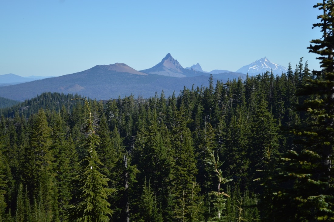 Mt. Washington, Three Finger Jack, Mt. Jefferson from the Pacific Crest Trail Oregon