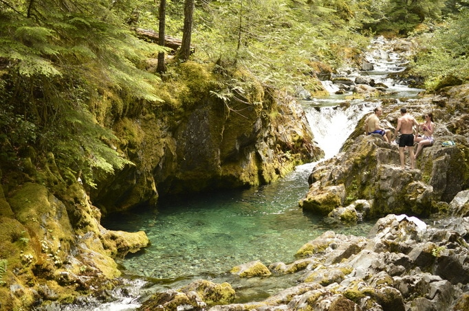 One of the many pool along the Opal Creek hiking trail