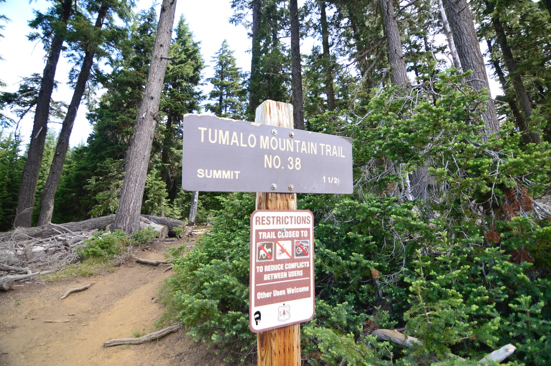 Tumalo Mountain trail sign