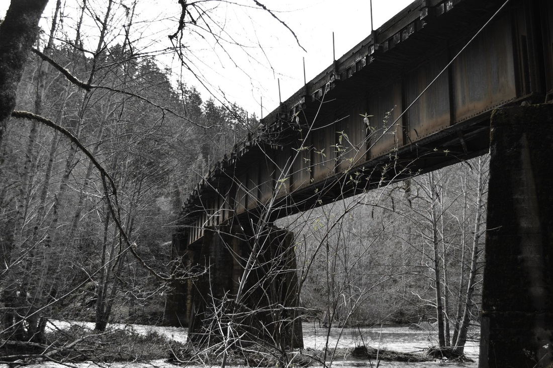 The train bridge over the Salmon Creek