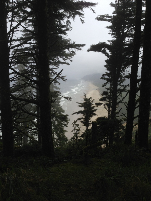 View of Hobbit Beach from Heceta Head trail