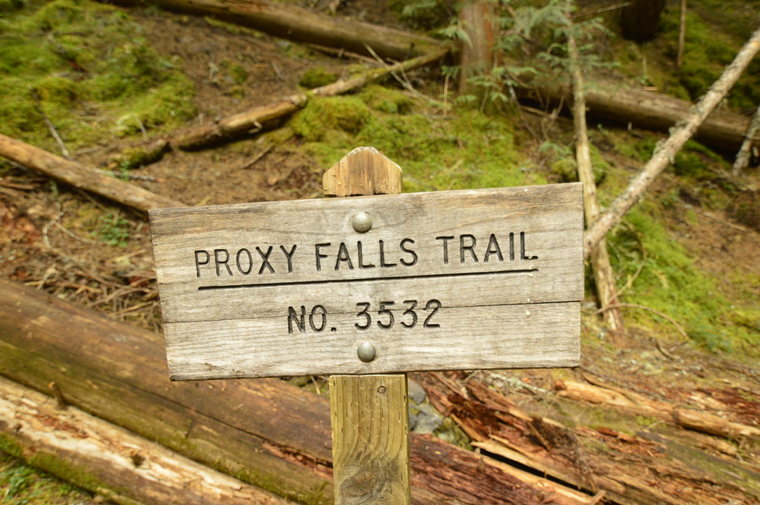 Sign for Proxy Falls trail no. 3532