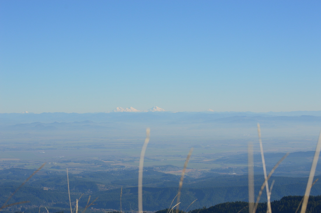 Mary's Peak summit view of the Cascade mountains