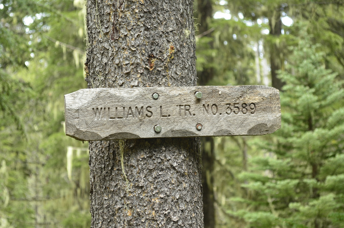 Sign for Williams Lake trail no. 3589
