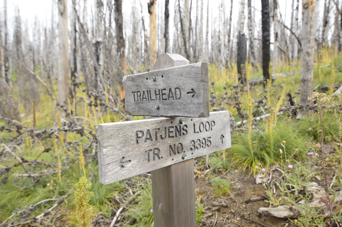A sign along the Patjens Lakes trail