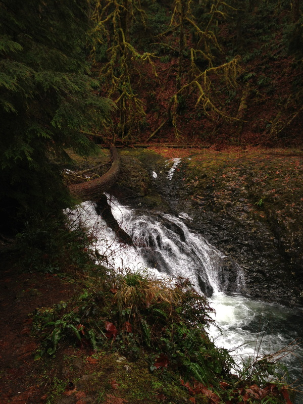 Twin Falls along the hiking trail at Silver Falls state park