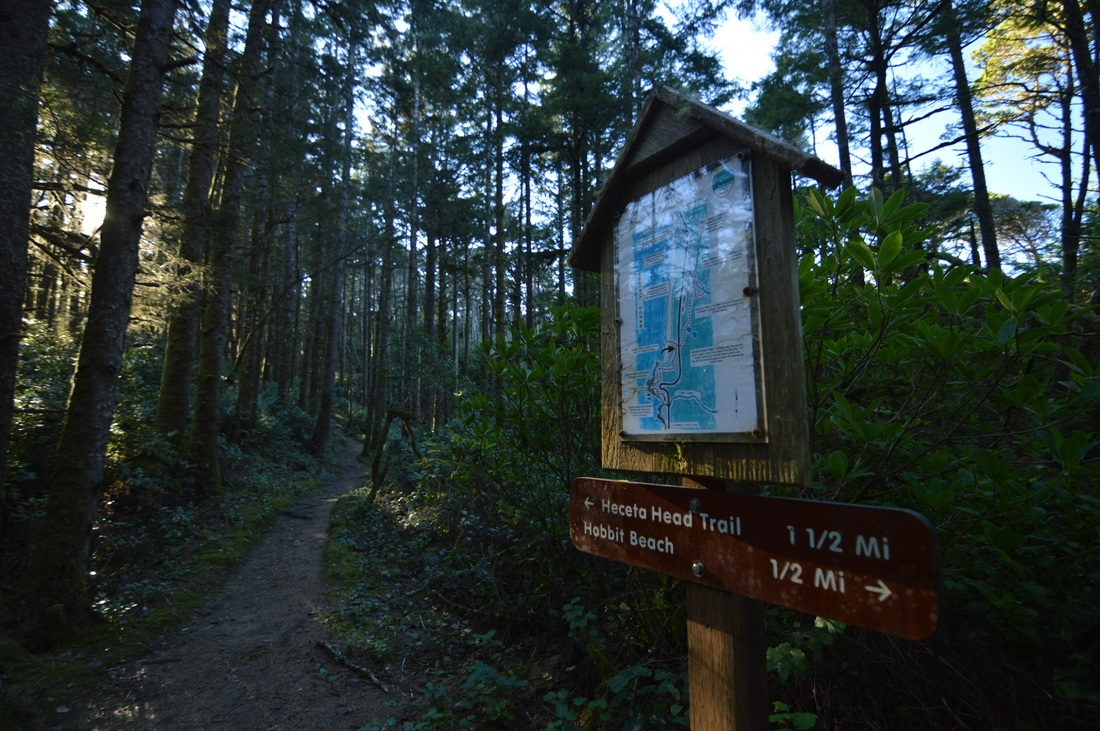 Trail sign to Hobbit Beach and Heceta Head