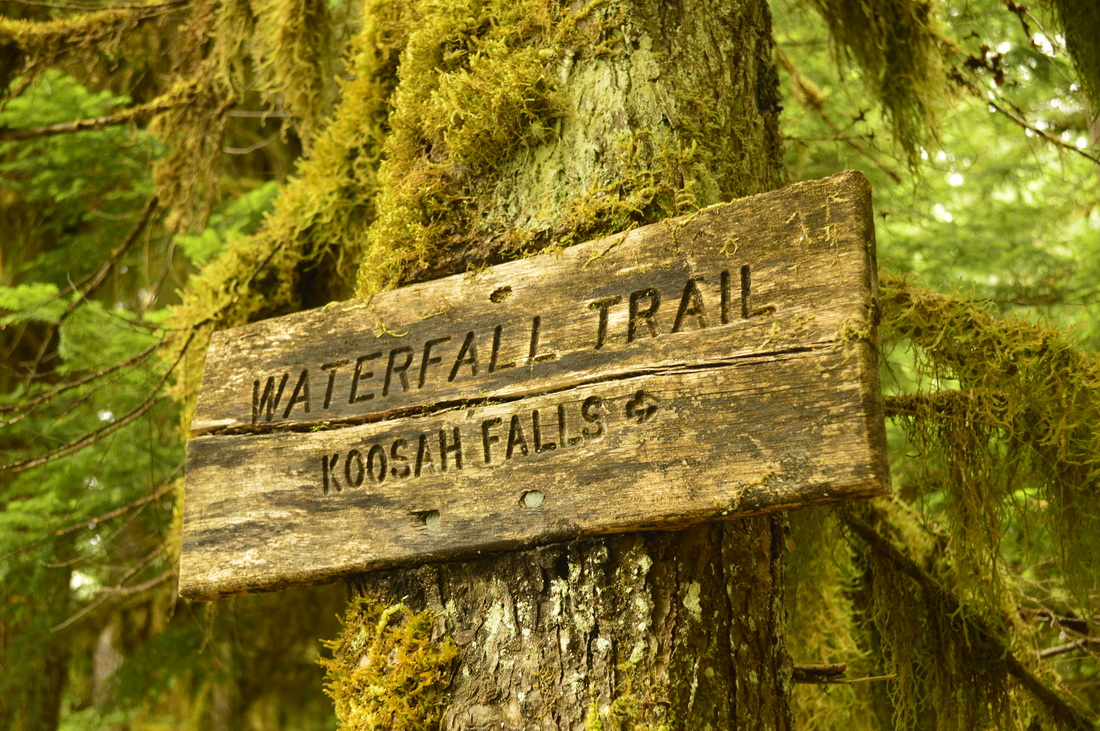 A sign for the Waterfall trail