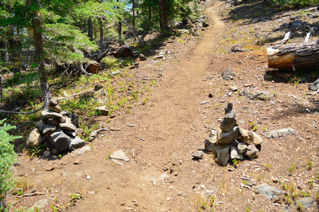 Cairns marking the Cowhorn mountain trail