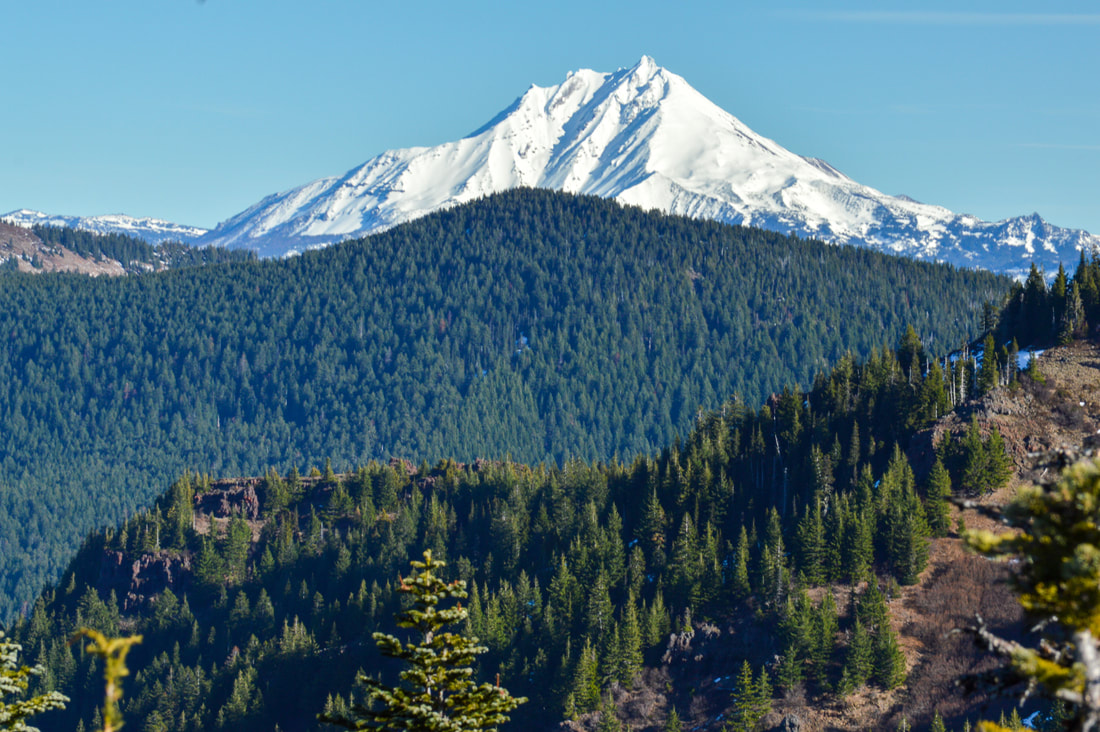 Mt. Jefferson from the Iron Mountain lookout platform