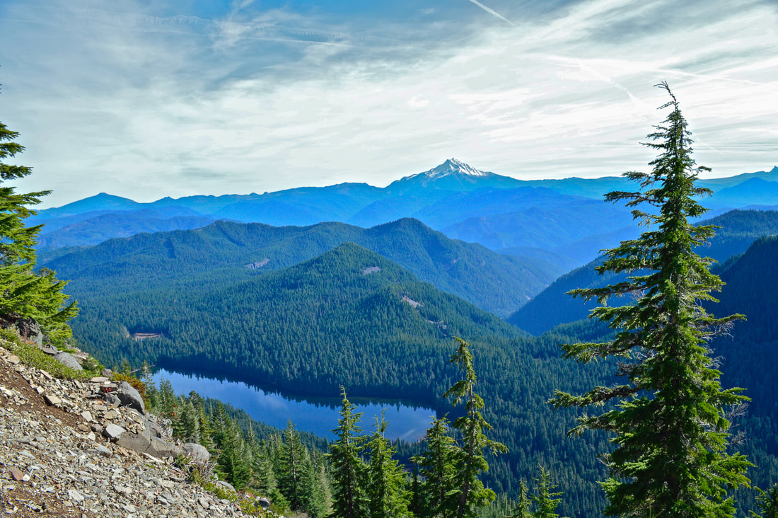 Mt. Jefferson and Elk Lake from Battle Axe trail
