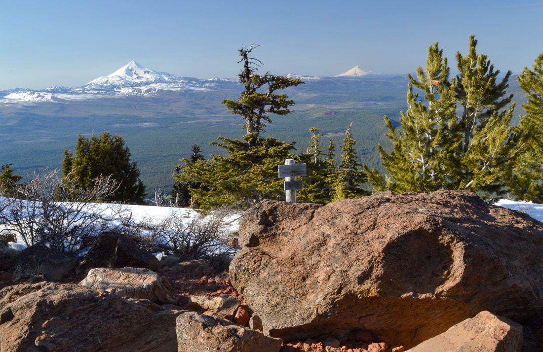 Mt. Jefferson and Mt. Hood from Black Butte