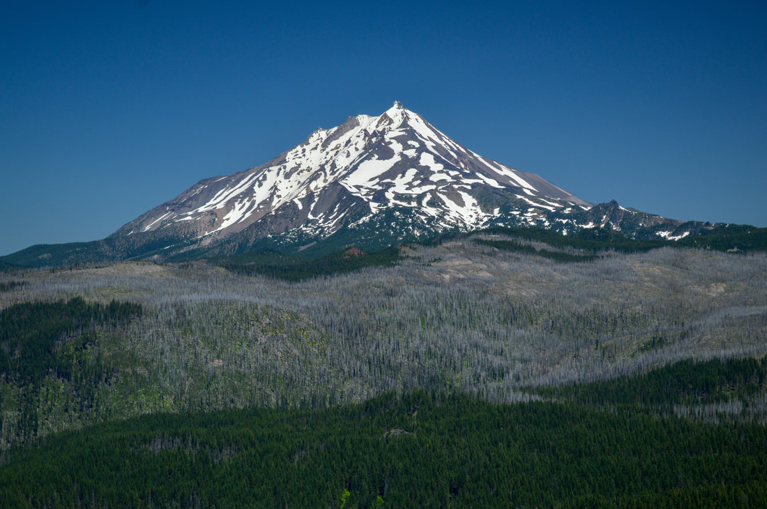 Mt. Jefferson from Marion Mountain