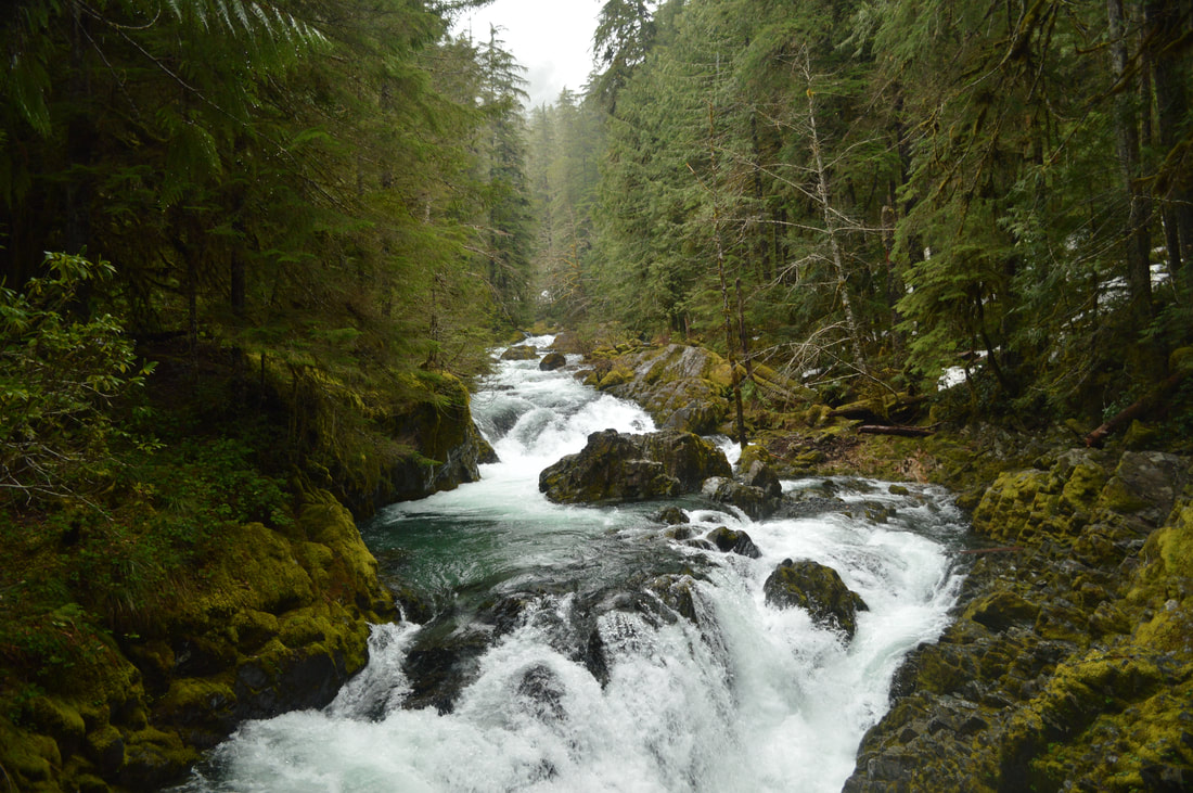 Opal Creek top Oregon winter hike
