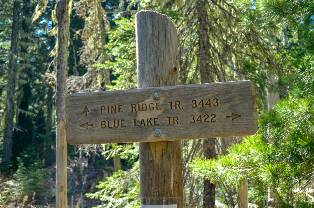 Pine Ridge trail sign