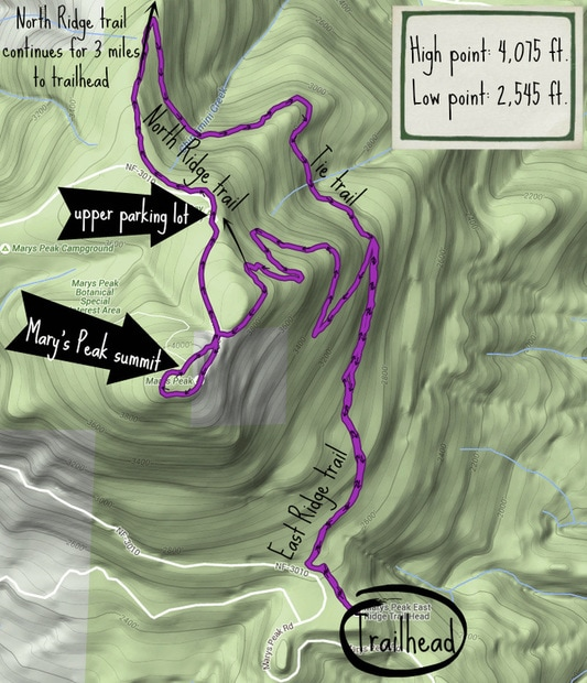 GPS map of the Mary's Peak East Ridge trail