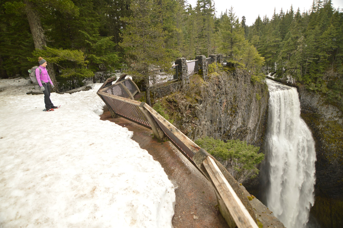 Salt Creek Falls top 10 oregon winter hike