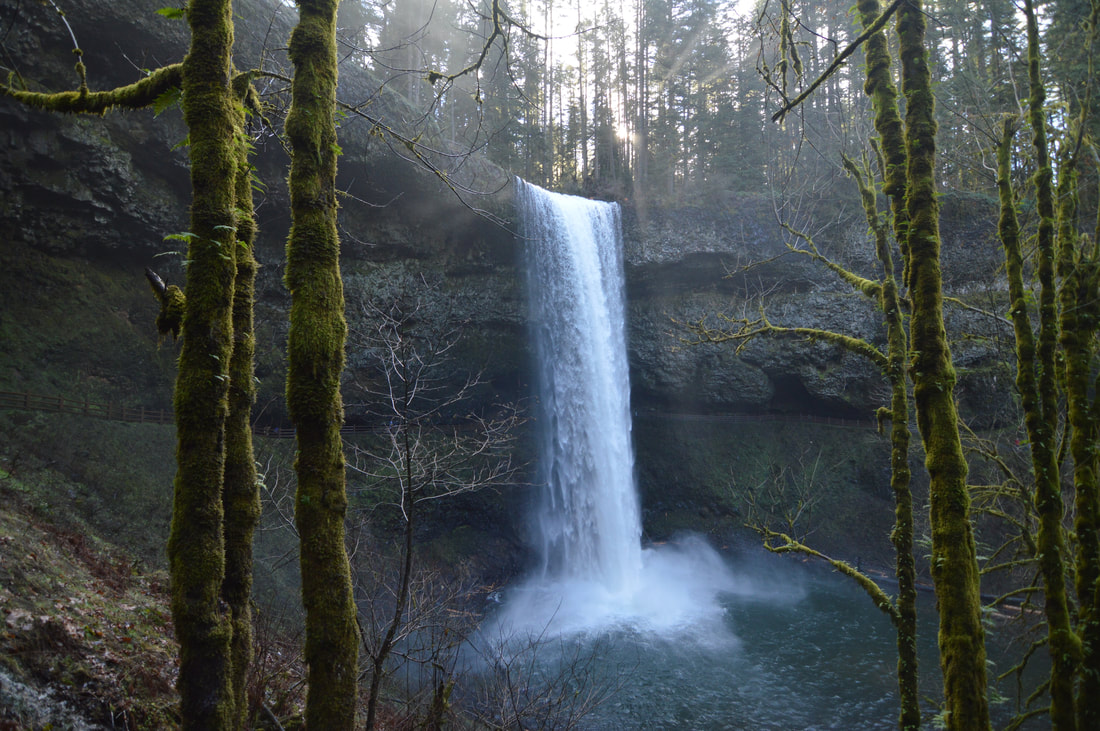 Silver Falls, top 10 oregon winter hikes