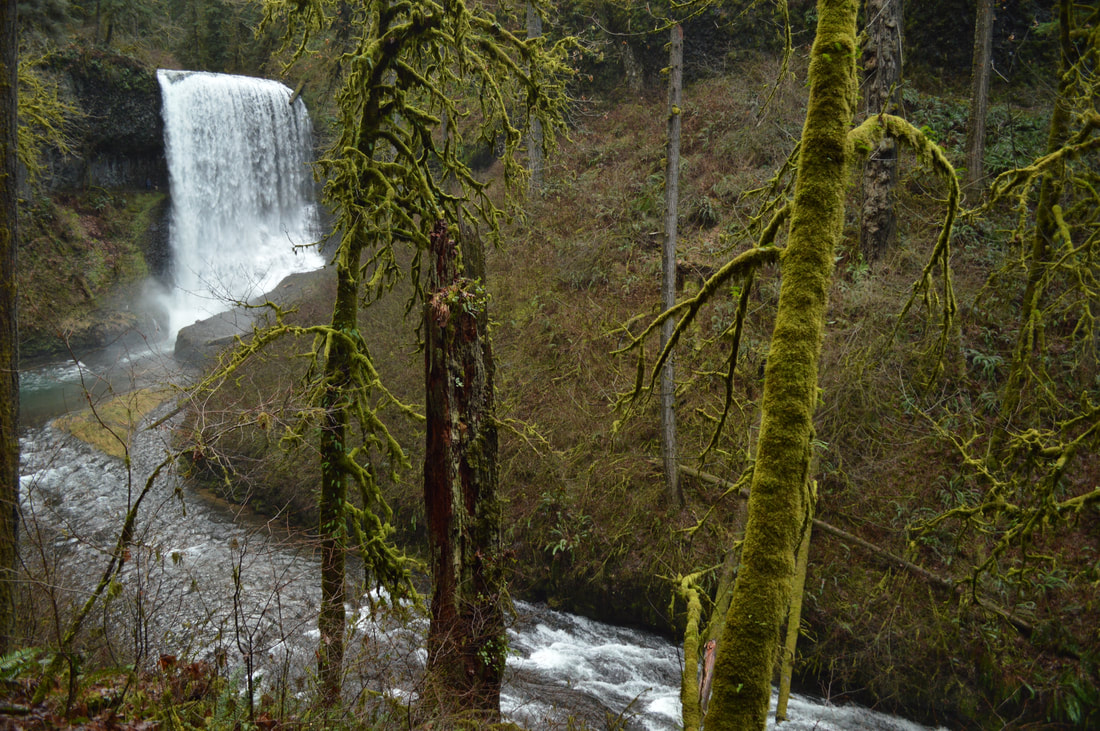 Top 10 Oregon winter hike Silver Falls