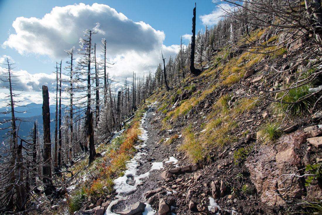 Steep section of the Whitewater Trail