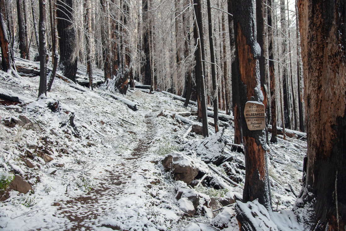 Whitewater Trail after the fire