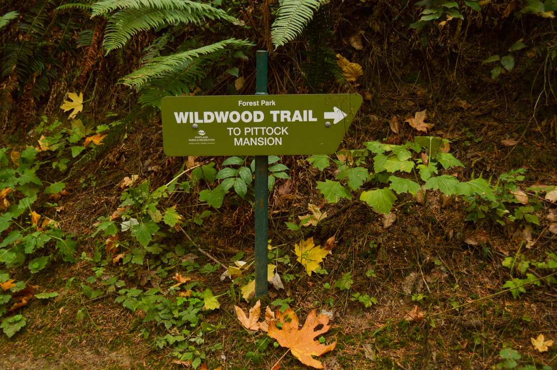 Wildwood Trail sign